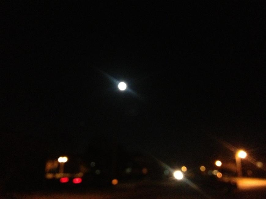 20121129-075733.jpg