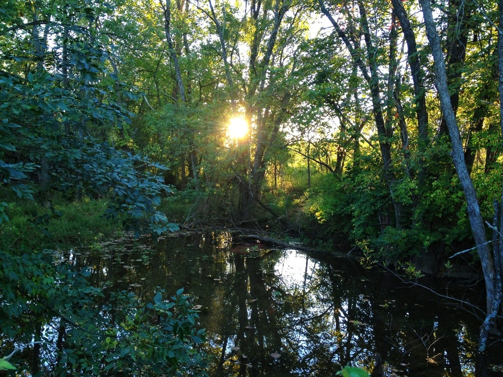 Evening Walk Along James River – October 8th